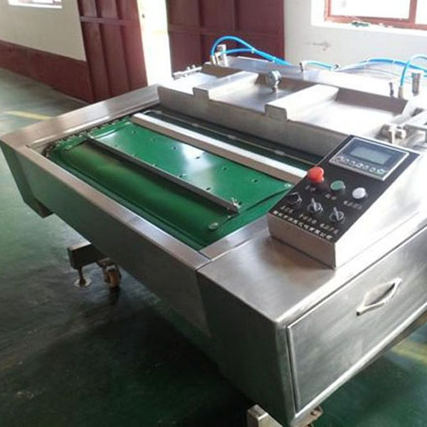 DZ1000C Continuous Vacuum Packaging machine