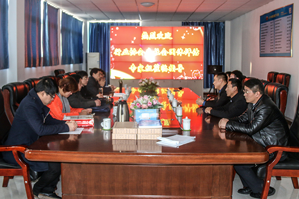 Warmly Welcome Jining Civil Affairs Bureau Industry Association of Social Organization Assessment Panel to Visit Jining E-commerce Association for Evaluation